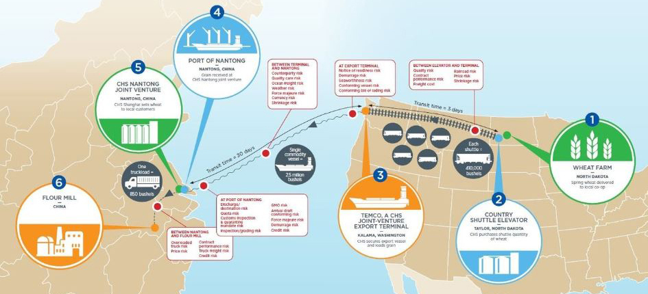 anatomy of a grain trade infographic
